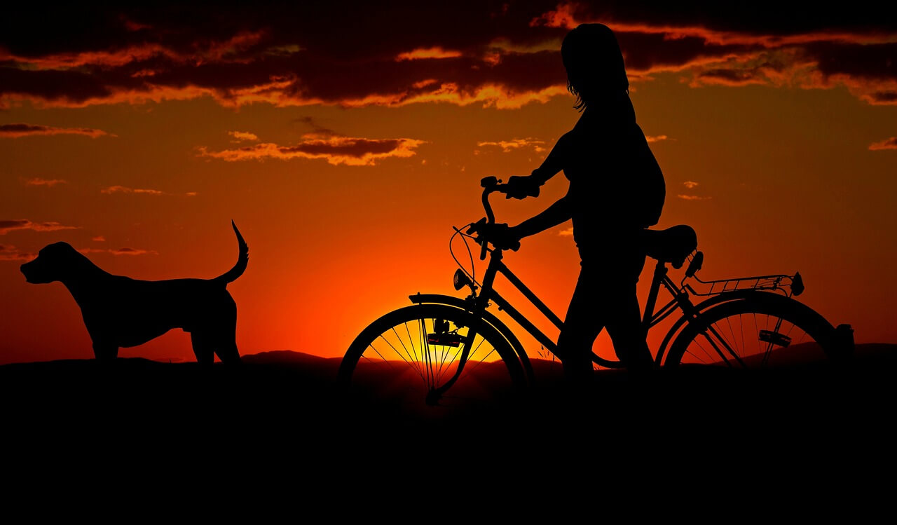 Silohuette of a woman on a bicycle and her dog