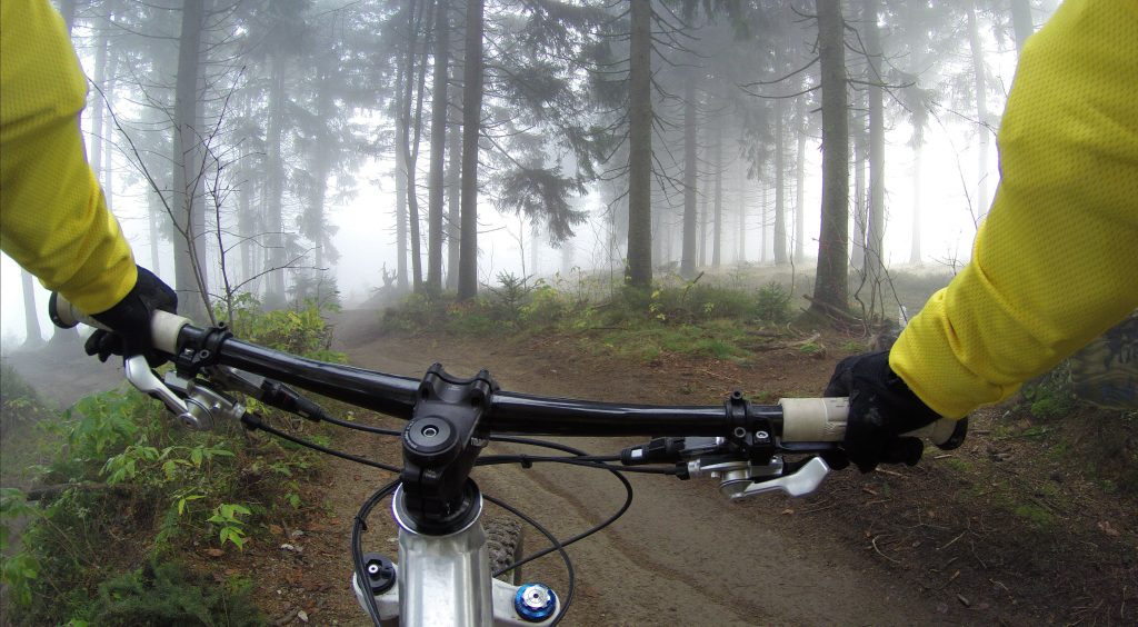 a cyclist wearing the best bike gloves and biking through the woods