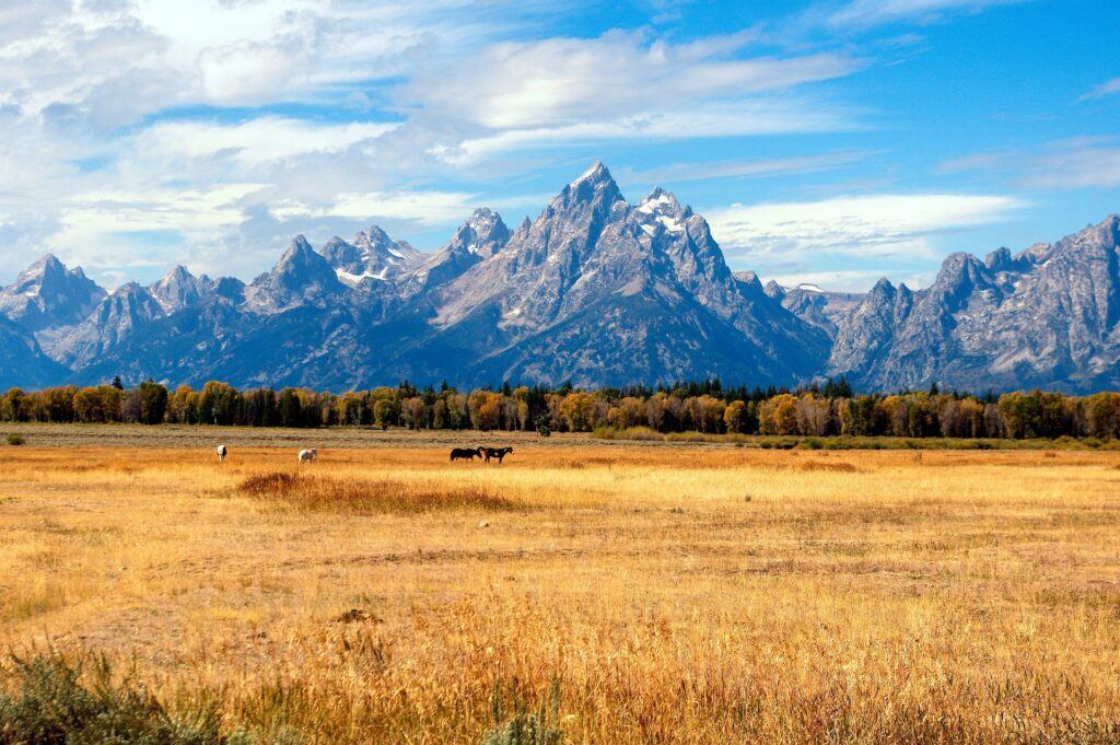 The mountains and plains of the Grand Tetons