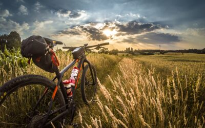 The Top 6 Best Specialized Mountain Bikes for Your Outdoor Fun